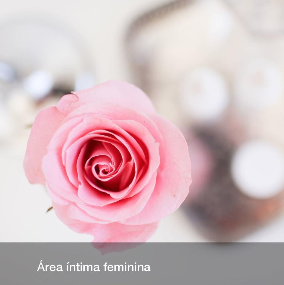 Área íntima feminina Dra Palmyra Geissler.jpg