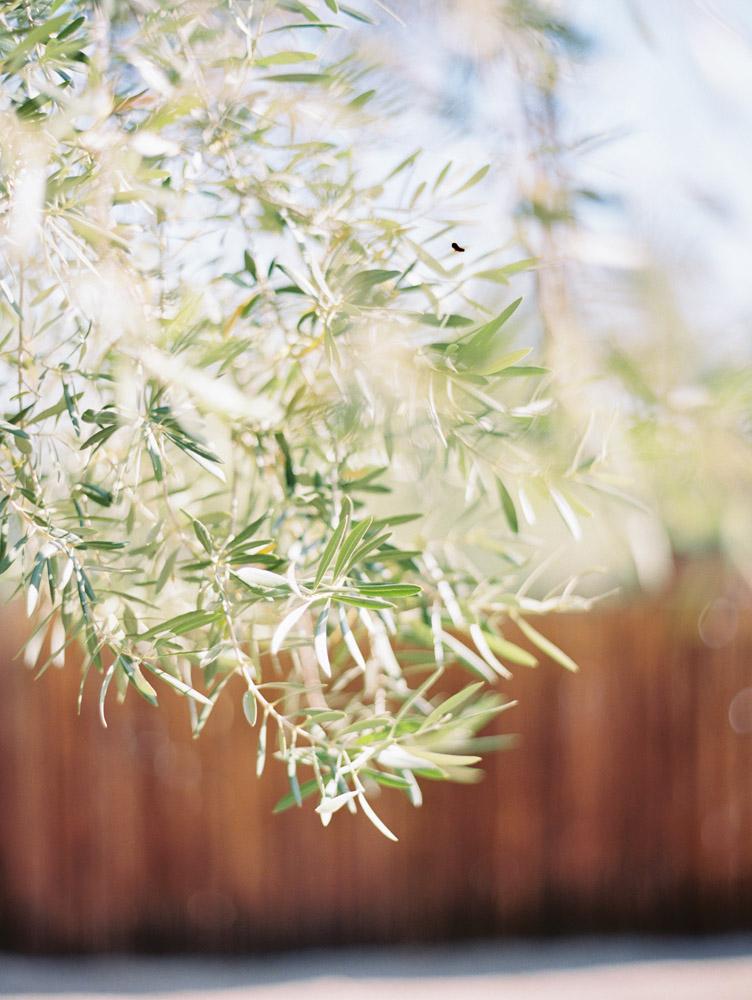 santa-ynez-wedding-photographer.JPG