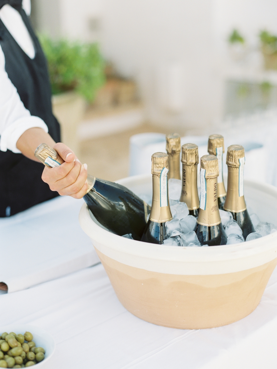 07-champagne-toast.jpg