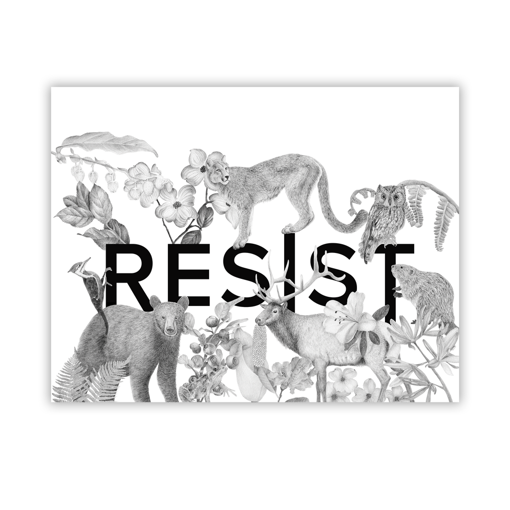 Illustration as Activism - Throughout history artists have lead the way using their work as a voice of dissent, protest and action for change. This illustration is my response to the current administration and the damage they are doing to our environment. Shop this print and 50% of the proceeds will go to NRDC.