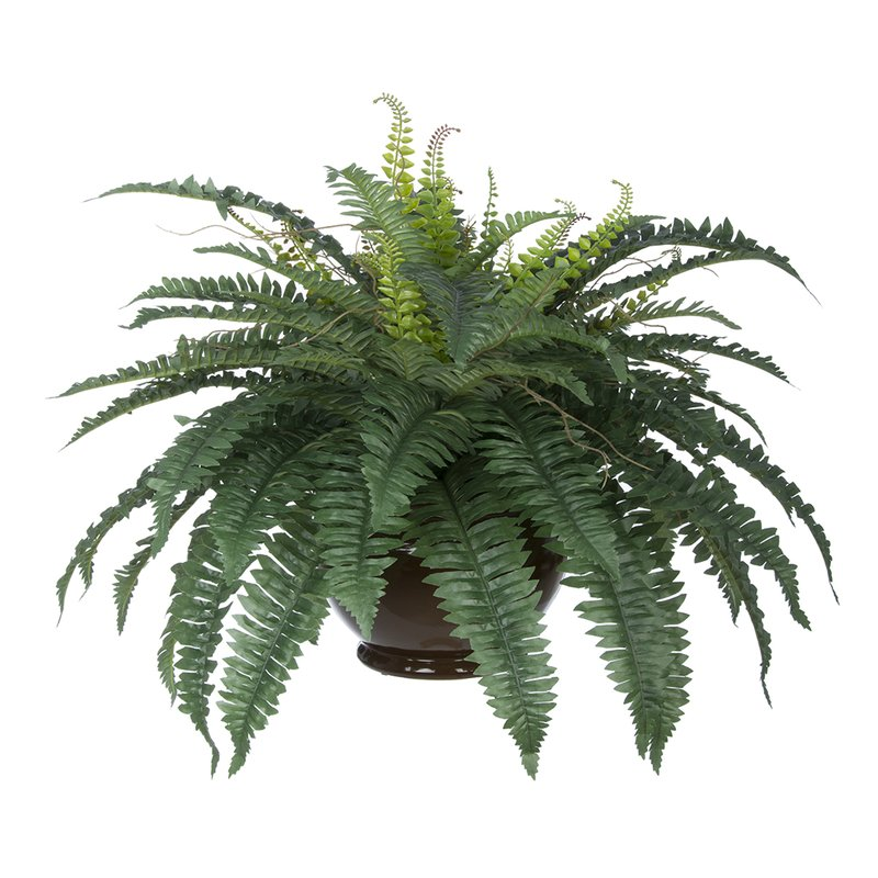 Artificial Fern Desktop Plant