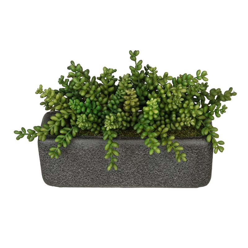 Artificial Sedum
