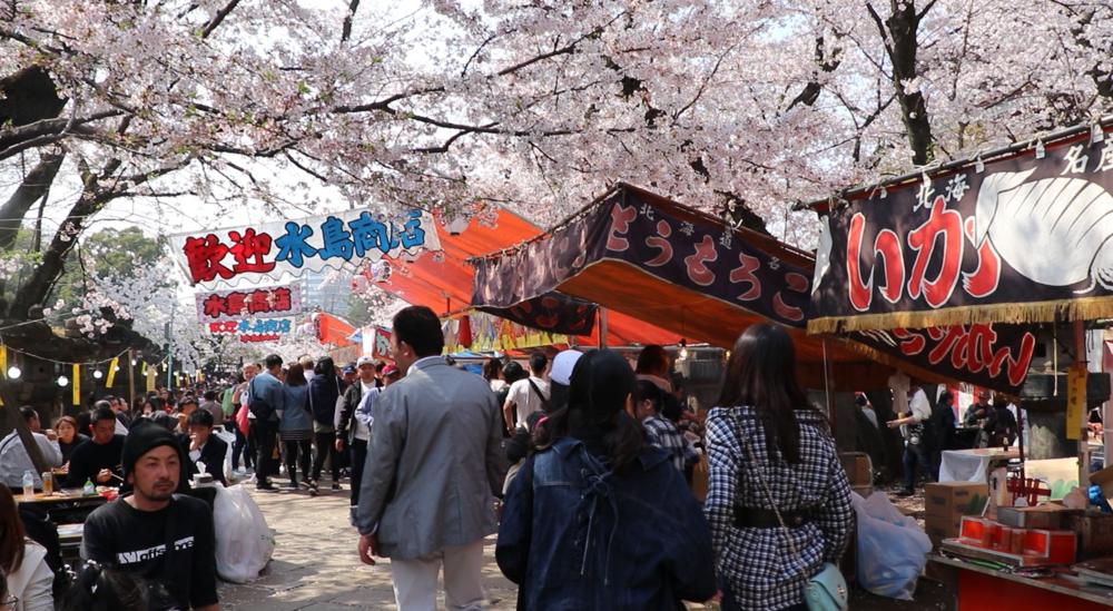 Top 10 Cherry Blossom Tokyo Spots ueno park