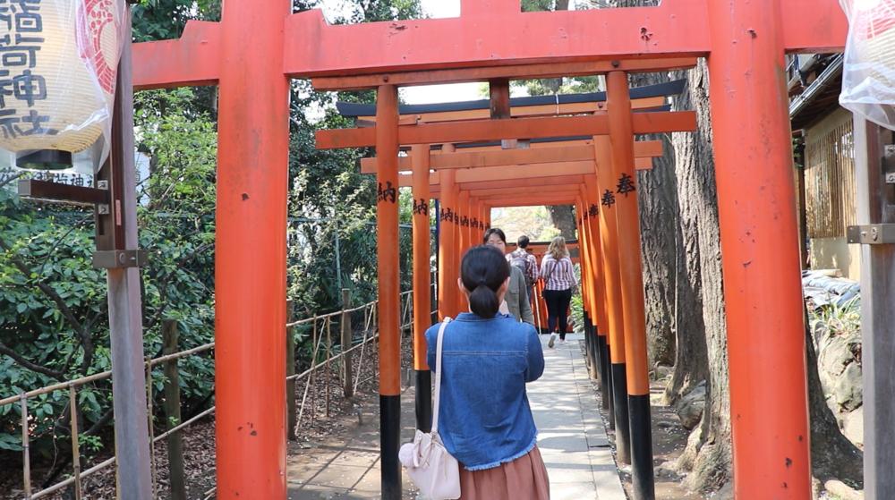 top 10 cherry blossom in tokyo  ueno park