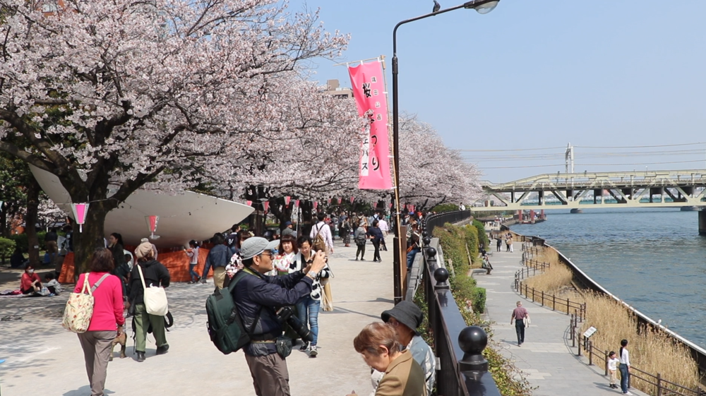 things to do in asakusa sumida park