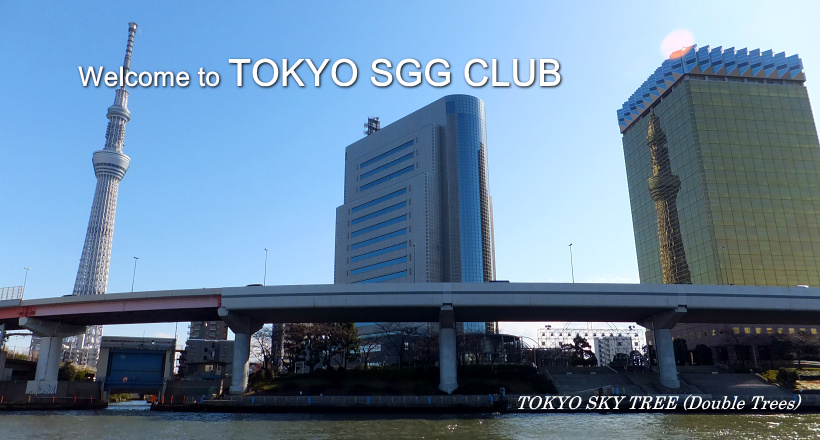 tokyo sgg club