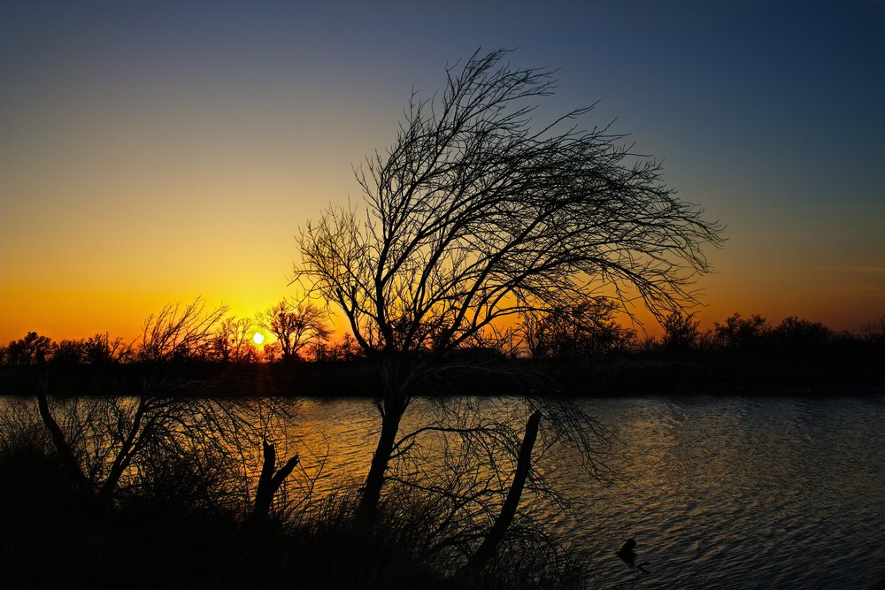 Sunset At Labonte Park  3.jpg