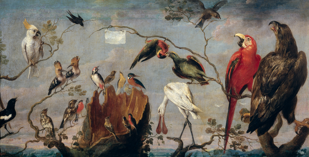 Frans Snyder,Birds Concert, circa 1630-1640