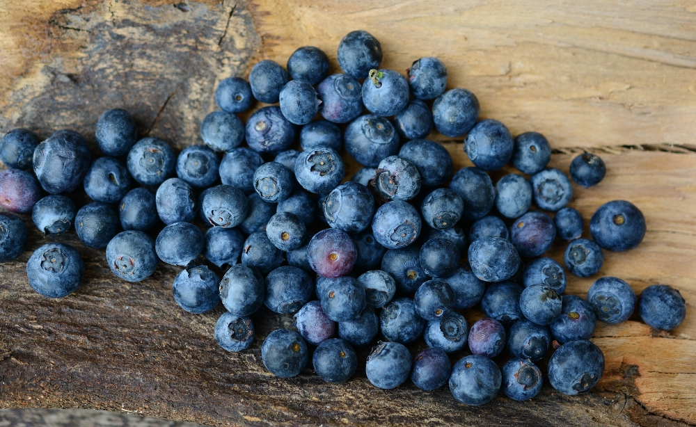 blueberries-2270379_1920.jpg