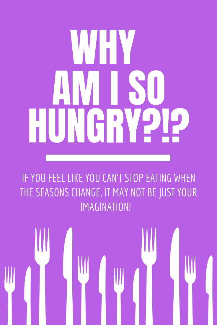 Why am I so hungry kelly bailey wellness kelly bailey fitness.png