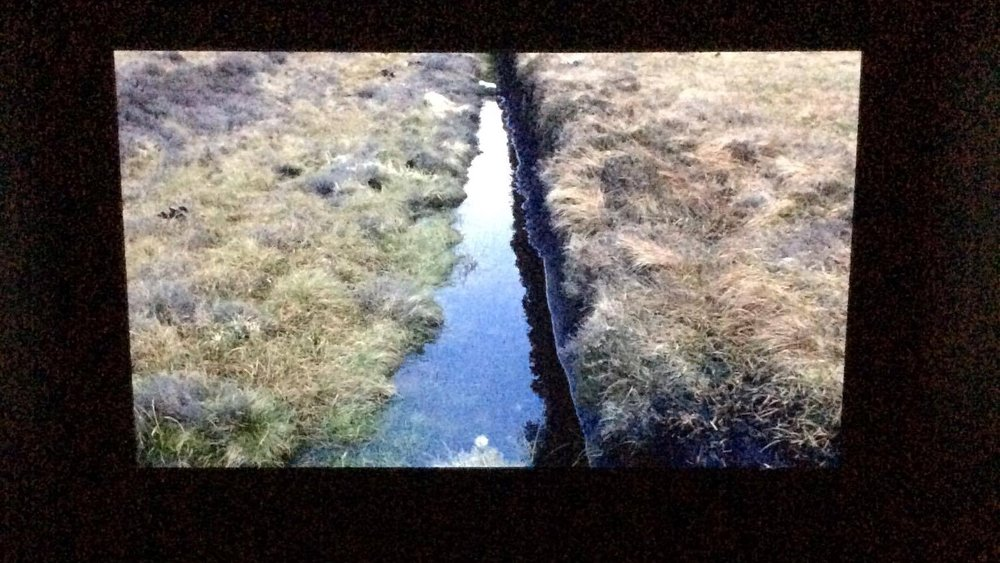 Still from Willie Doherty,  Ancient Ground,  2011.