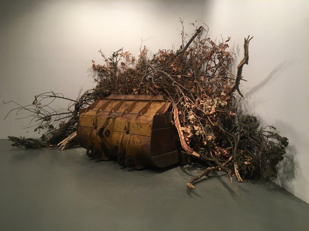 "Alper Aydin, ""D8M,"" 2017, Bulldozer Blade & Trees"