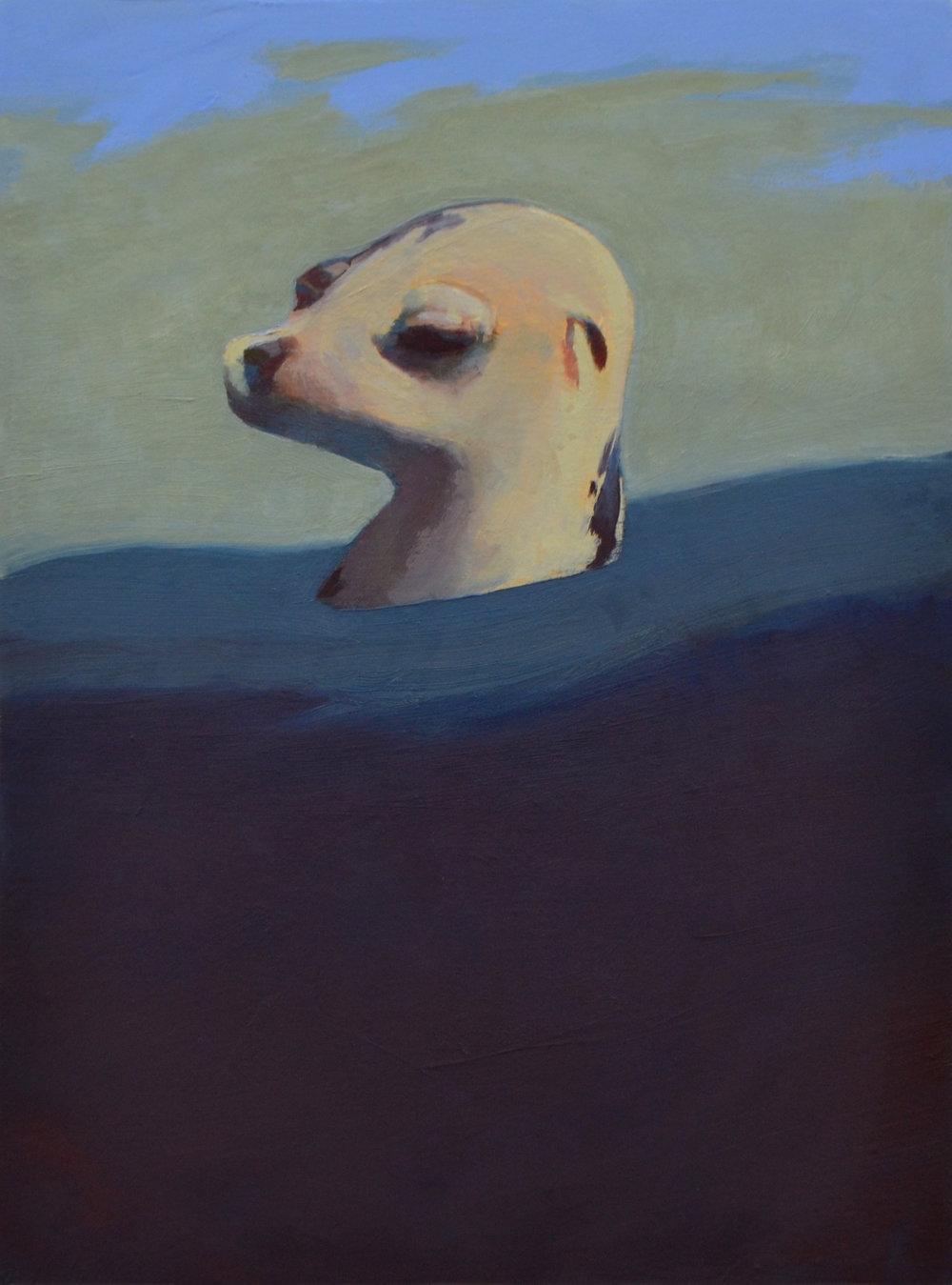Sea Dog 17x13.jpg