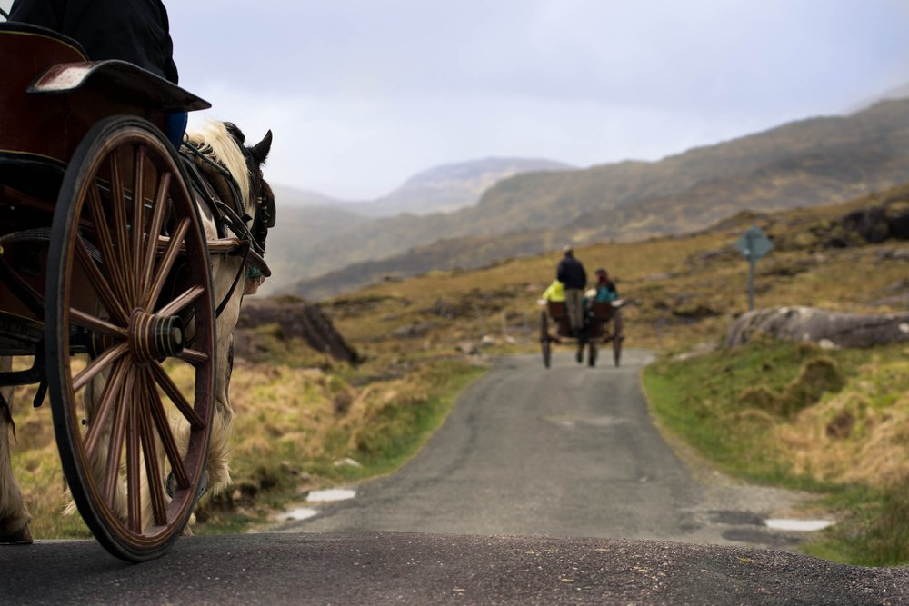 Ireland, Horse, Horse-Drawn Carriage, Travel