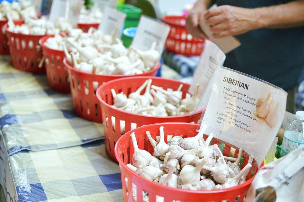 At the Toronto Garlic Festival, the sheer variety of garlic was astonishing.