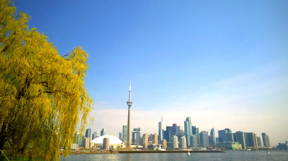 36 Hours in Toronto - Toronto Islands