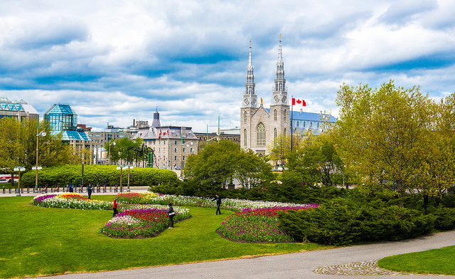 The Notre-Dame Catherdral Basilica is one of Canada's most iconic churches.©Neil Robertson