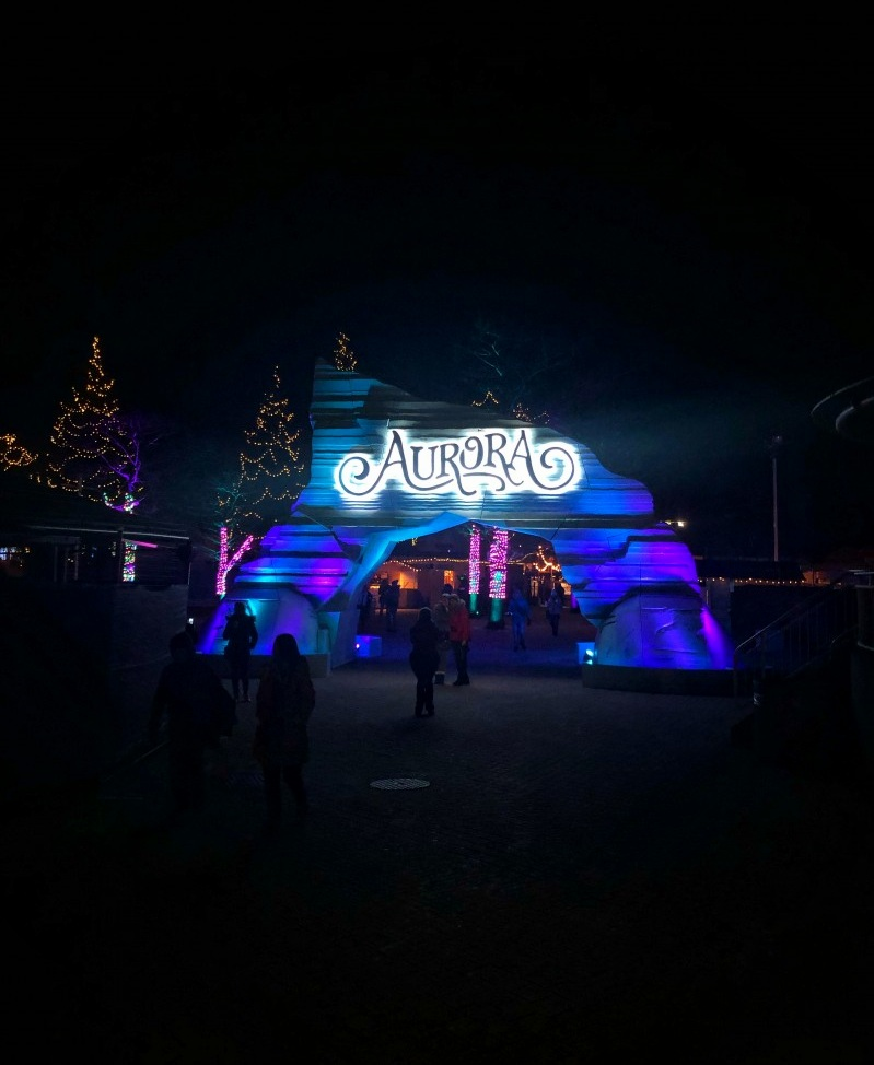 Toronto's Aurora Winter Festival is one of the top things to do in the winter in Toronto