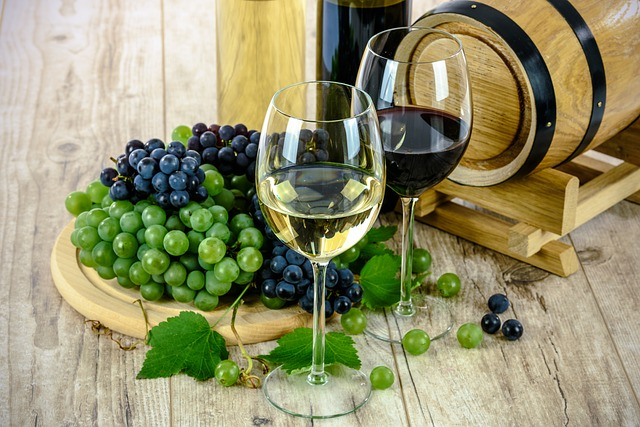 Today, we're talking about the best Finger Lakes Wineries in Finger Lakes Wine Country