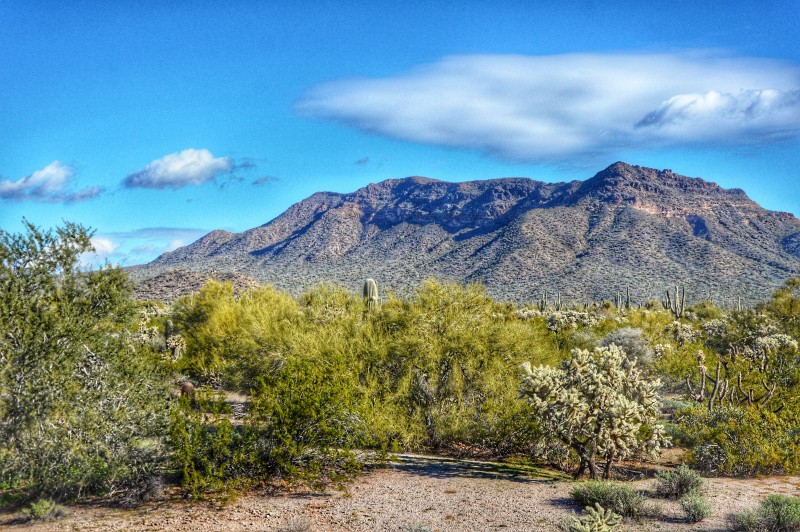If you're planning a trip to Tempe, think about going to Usery Mountain Regional Park outside Tempe, Arizona