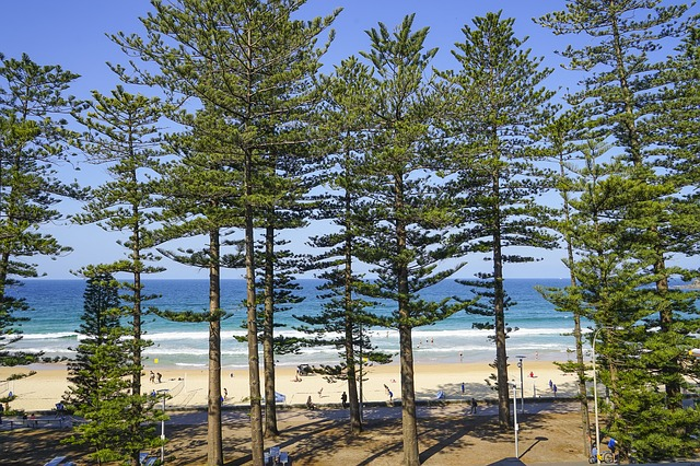 Going to kick it at Manly Beach, which is one of the finest outdoor activities in Sydney