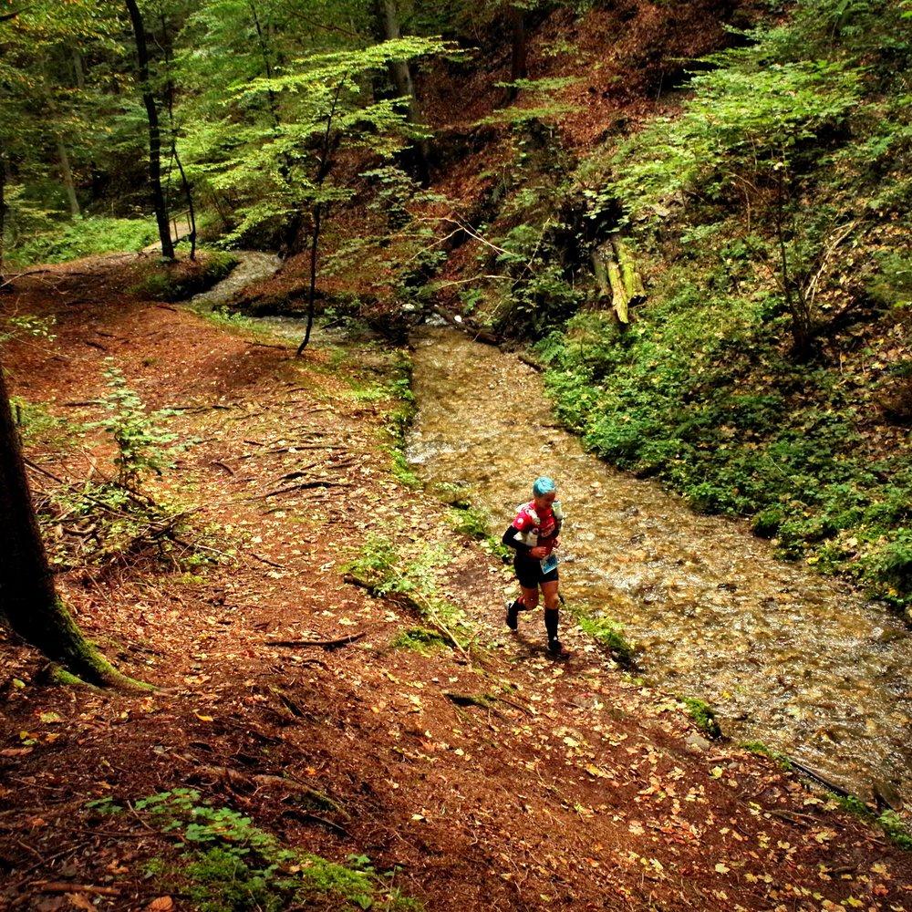 Wörthersee TrailManiak terepfutás 60 km
