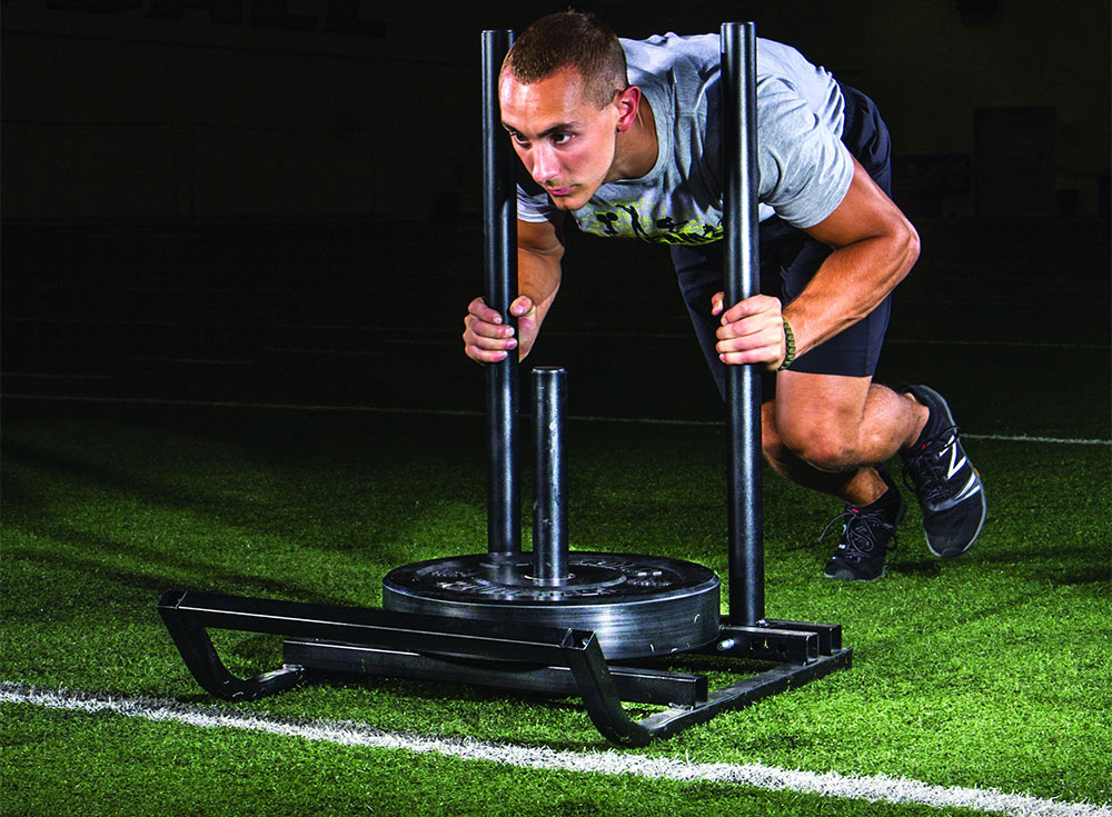 ta155_push-pull-sled_m_2015_copy small.jpg