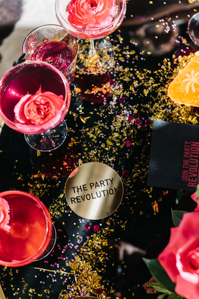 FORREST AND J - The Party Revolution - Website Launch feature on Party With Lenzo