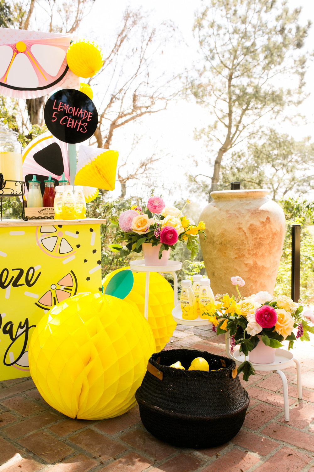 Lemonade Stand Kids Birthday Party - Honeycomb Lemon Decor