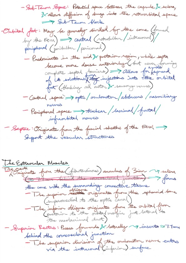 Relevant Anatomy for Ophthalmic Anaesthesia — ANAKAYUB\'s Notes