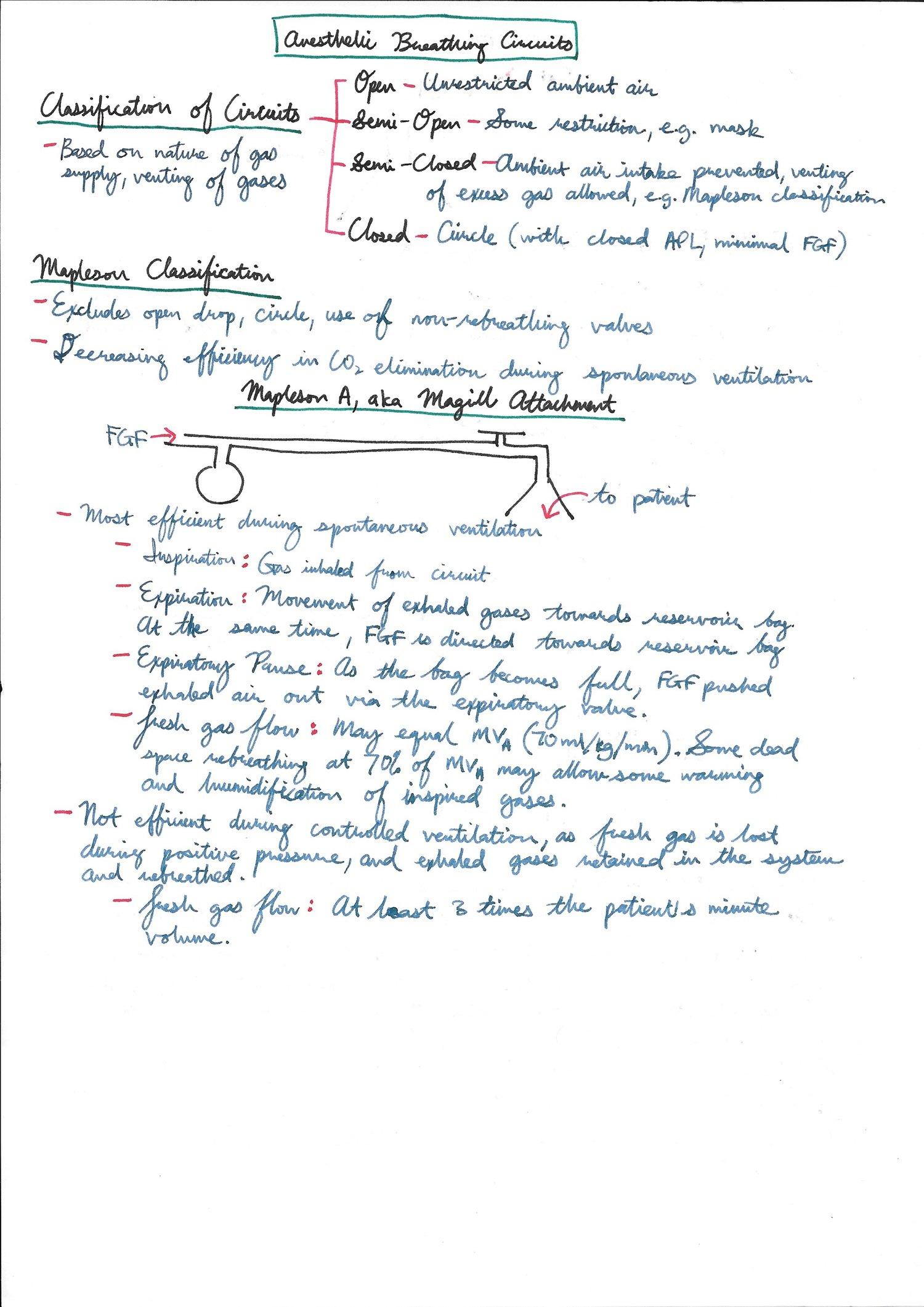 Circuito Vascular : Pulmonology ent airway u2014 anakayubs notes