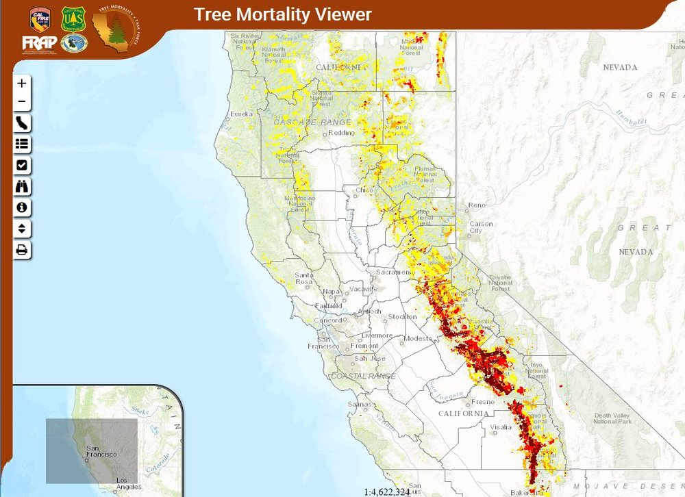 Tree Mortality Viewer by CAL FIRE