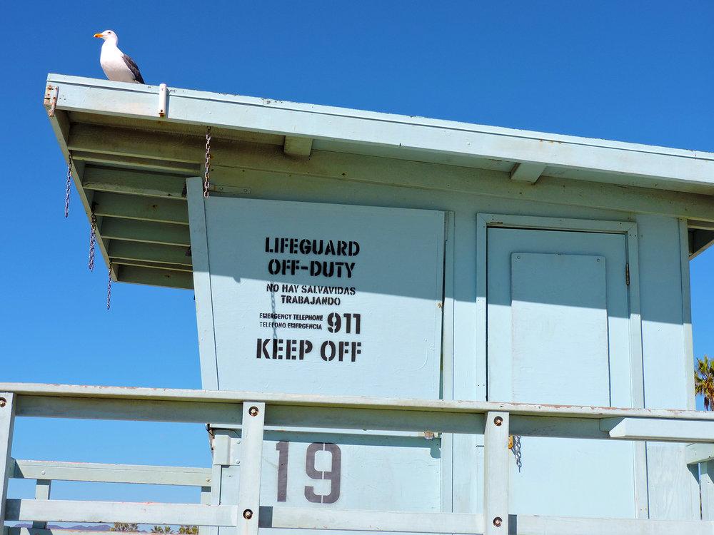 Venice Beach Lifeguard Tower.jpg