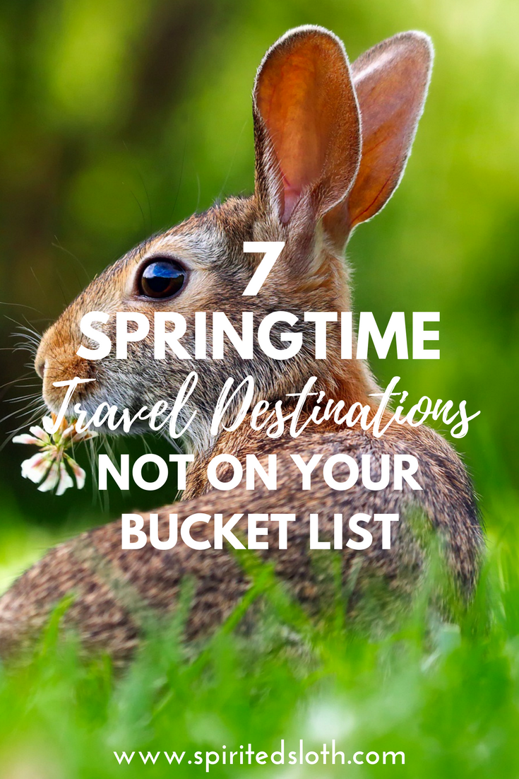 Birds are chirping, flowers are blooming, and it's baby animal season! Springtime is beautiful all around the world, but here are 7 of the most gorgeous and unique springtime travel destinations that you might not have thought of yet.