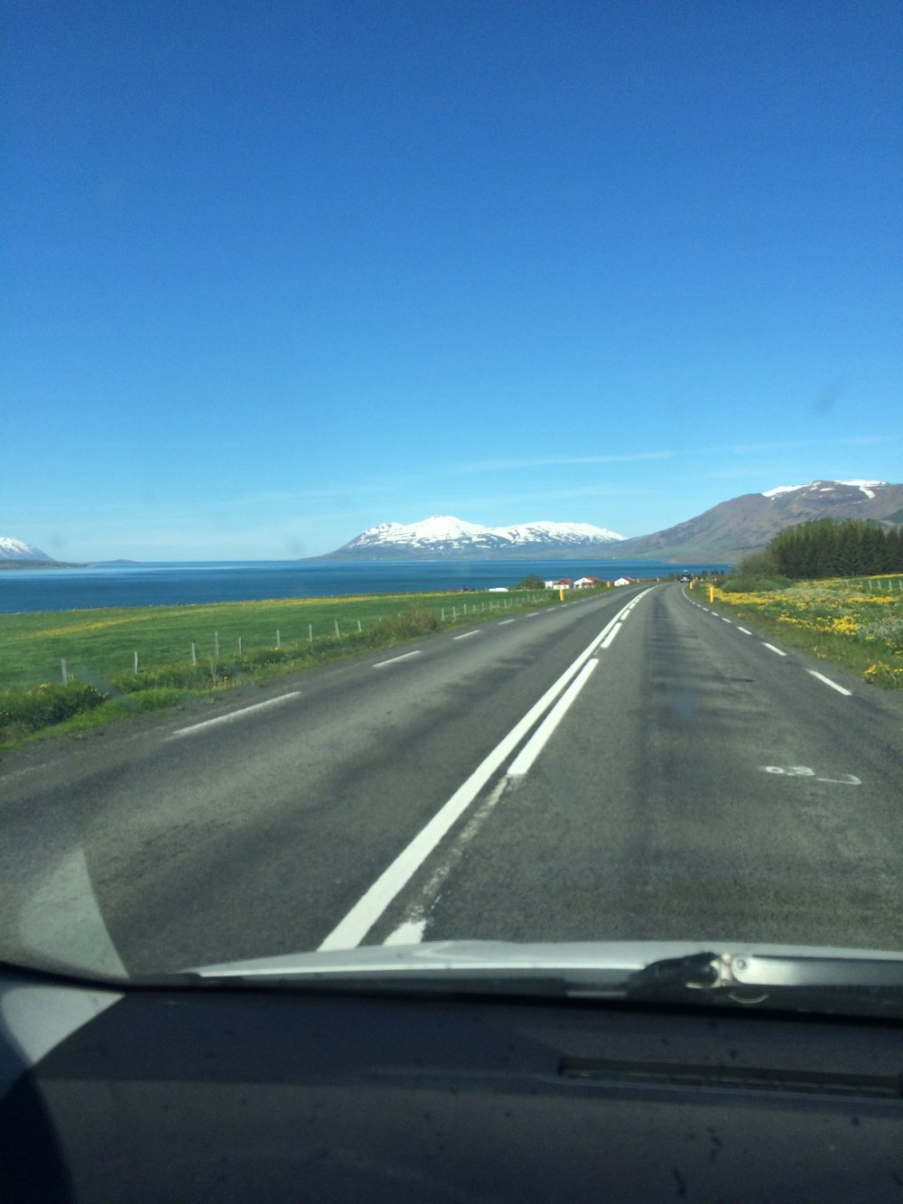 Yes, I took pictures from behind the wheel. I know it's bad. Go to Iceland and try to resist photographing every second.