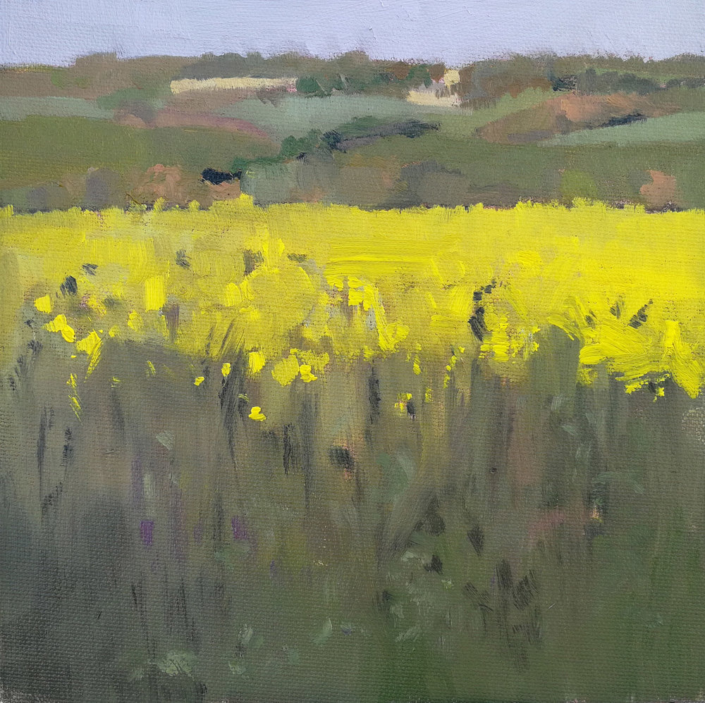 The fields in May - press image.jpg