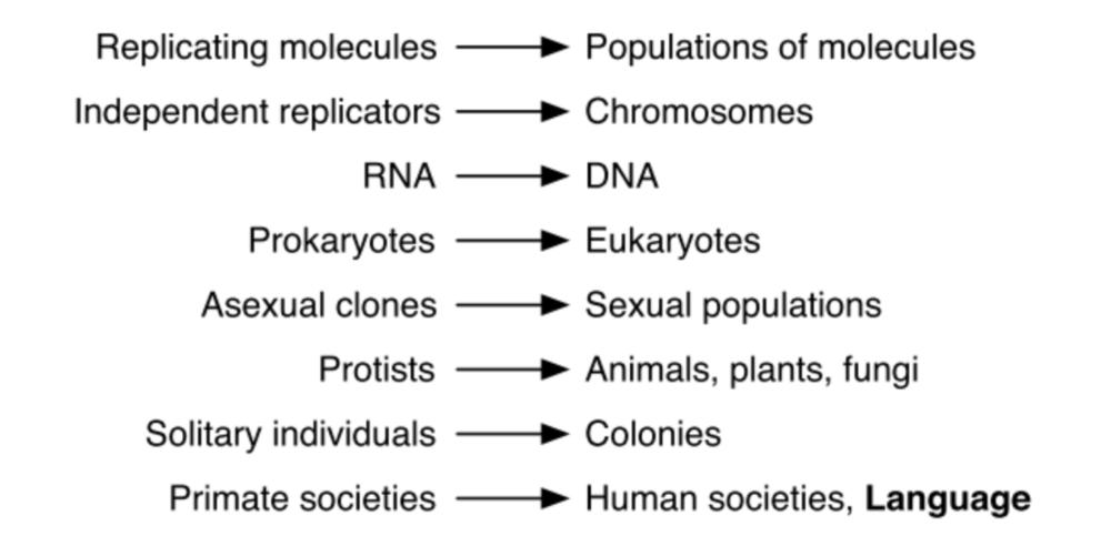Maynard Smith & Szathmáry's    Major Transitions in Evolution    (1995)