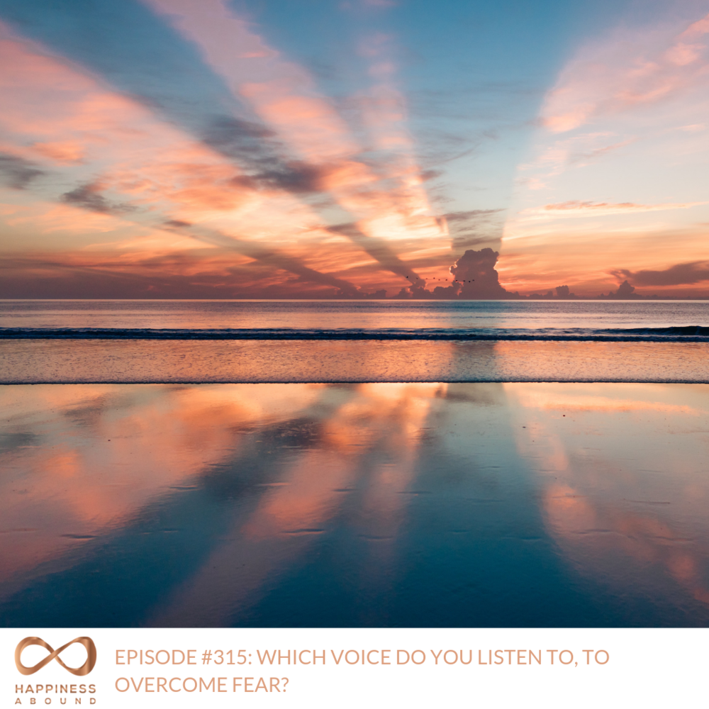 #315_  WHICH VOICE DO YOU LISTEN TO, TO OVERCOME FEAR_.png