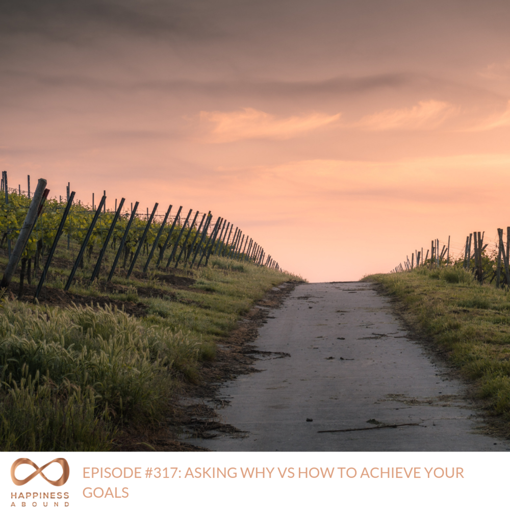 #317_ ASKING WHY VS HOW TO ACHIEVE YOUR GOALS.png
