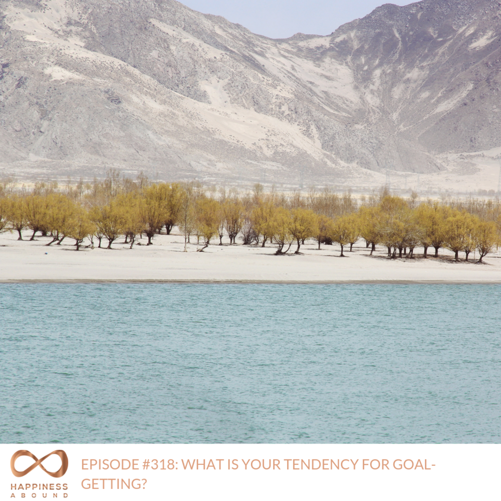 #318_ WHAT IS YOUR TENDENCY FOR GOAL-GETTING_.png