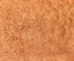 Copy of Madrone Burl