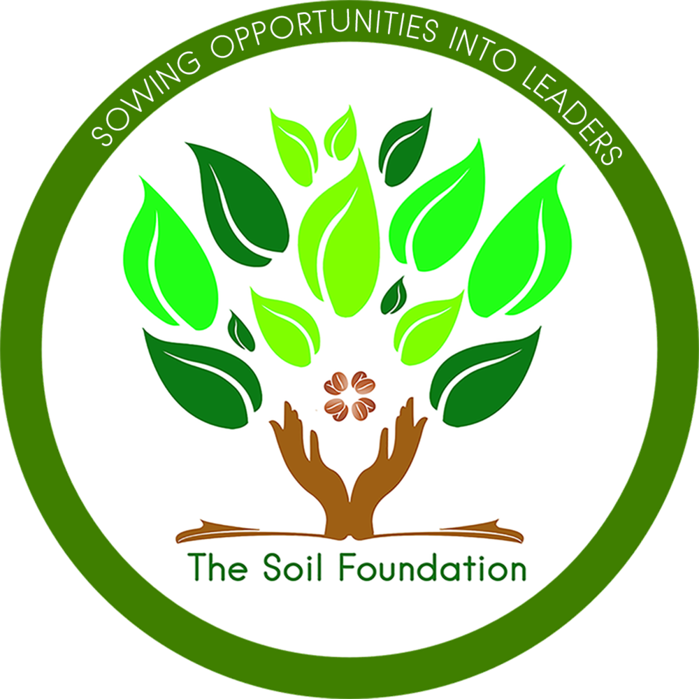 tsf official logo.png