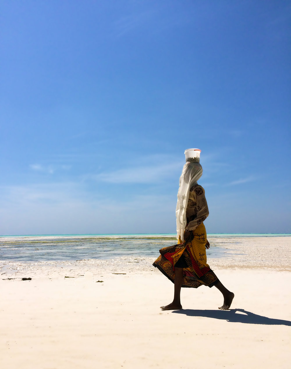 Woman carries her daily catch of mollusks on her head  Jambiani, Zanzibar