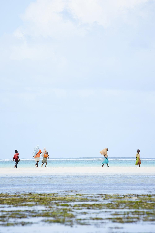 Beach Walk  Zanzibar, Tanzania