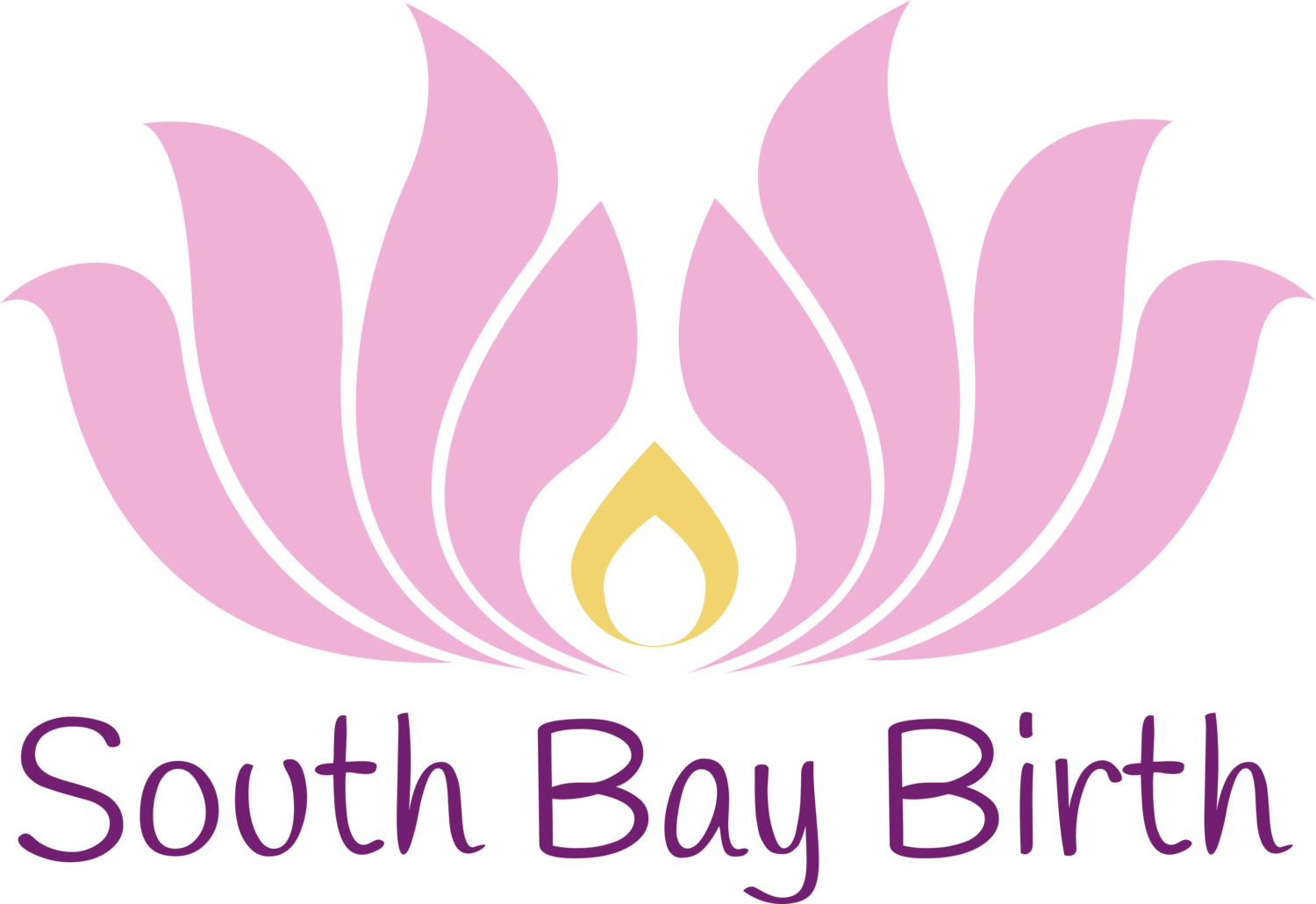 South Bay Birth