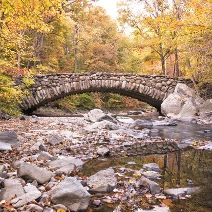 rockbridge-650x434.jpg