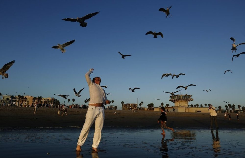 "Evan Cowitt throws bread on Venice Beach in celebration of Tashlich on the first day of Rosh Hashanah in 2017. Tashlich, which means ""casting away,"" invites participants to throw bread or stones into a flowing body of water to symbolically cast away their sins. (Genaro Molina / Los Angeles Times)"
