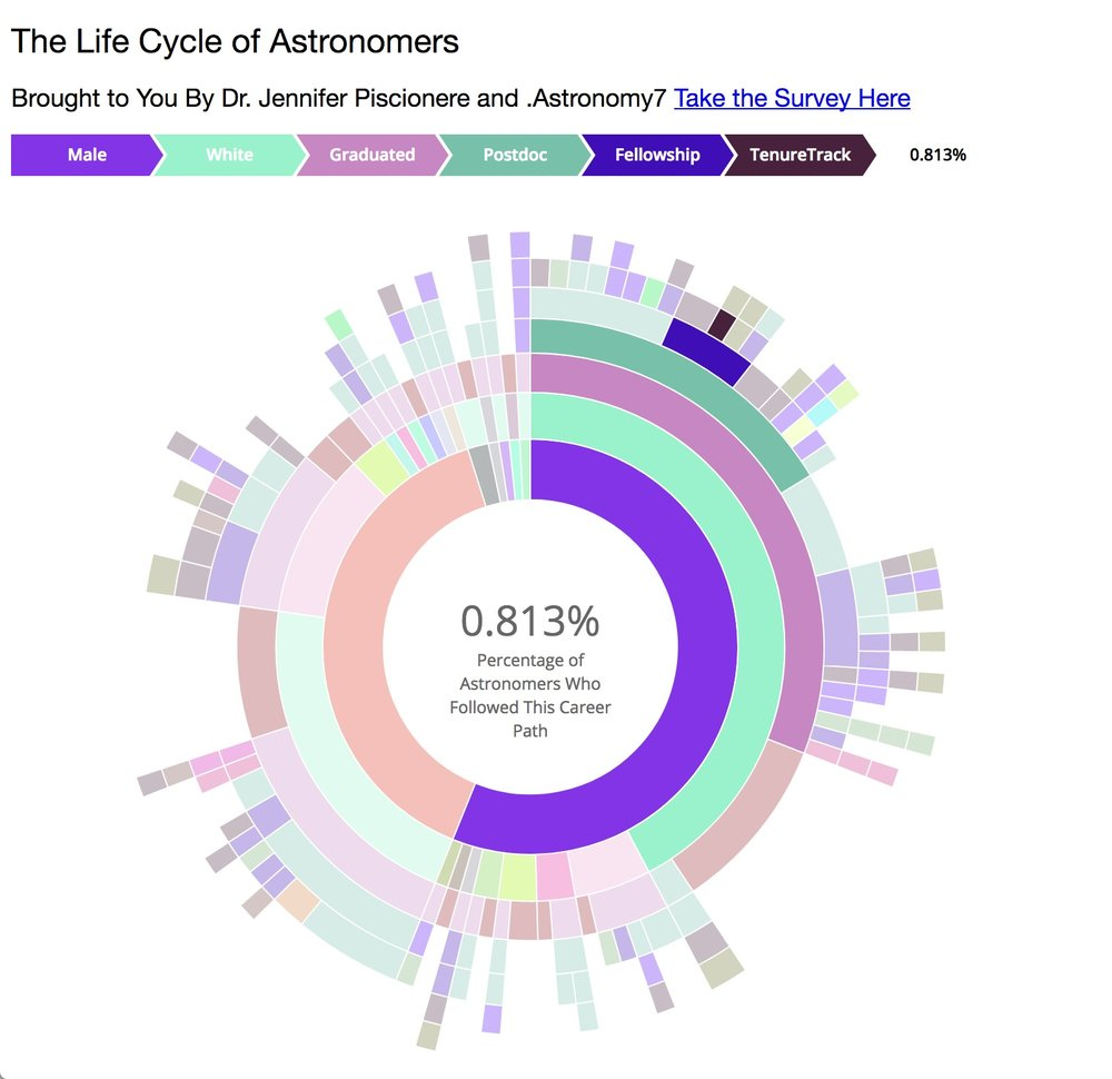 The Lifecycle of Astronomers – Survey Results