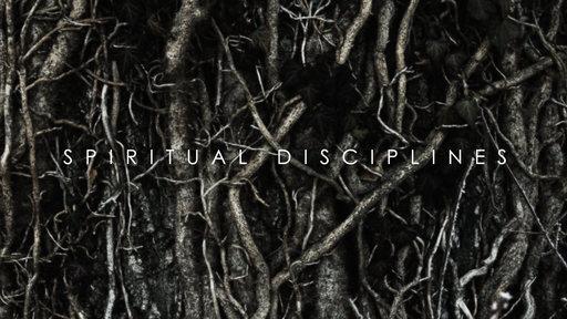 2018_Disciplines.jpg