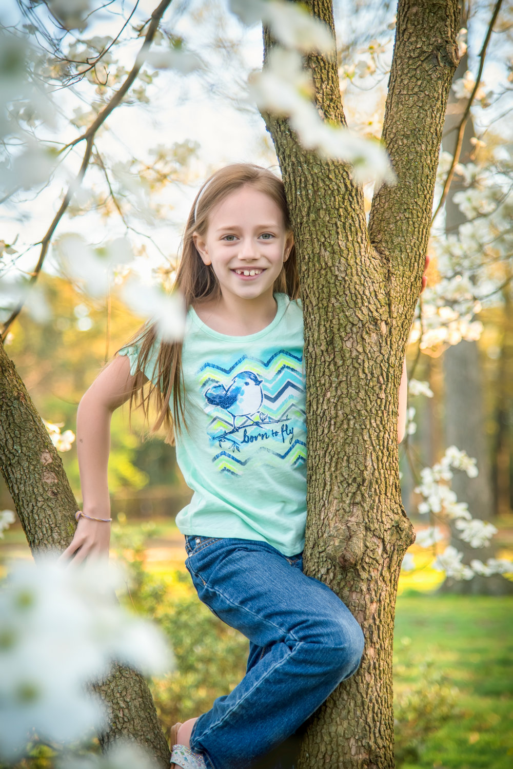 Little girl in dogwood tree at spring family portraits at bryan park in richmond virginia